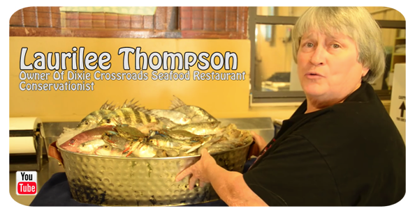 CLICK to view Laurilee Thompson on preserving the Indian River Lagoon.